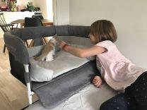 Close2Me Type A1 Hunde- Katteseng